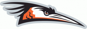 delmarva-shorebirds
