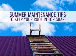 Summer Maintenance Tips to Keep Your Roof in Top Shape