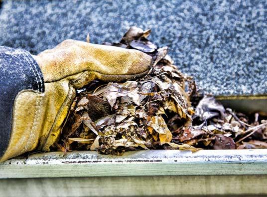 gutter cleaning in delaware