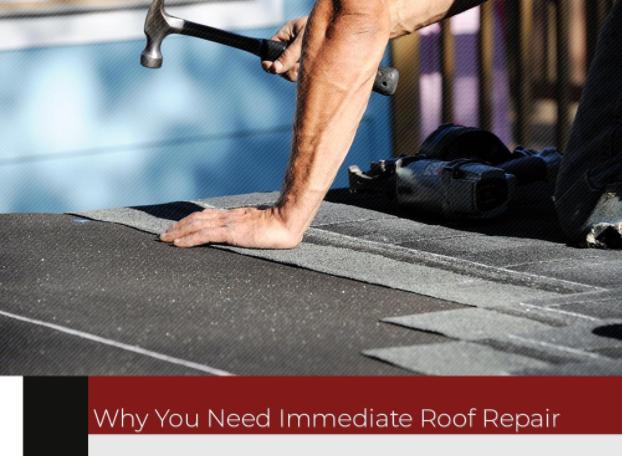 Why You Need Immediate Roof Repair